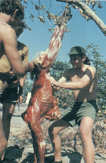 Scouts learn to skin monkeys and eat taint meat in survival conditions.