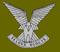 Selous Scouts osprey badge for beret or cap.